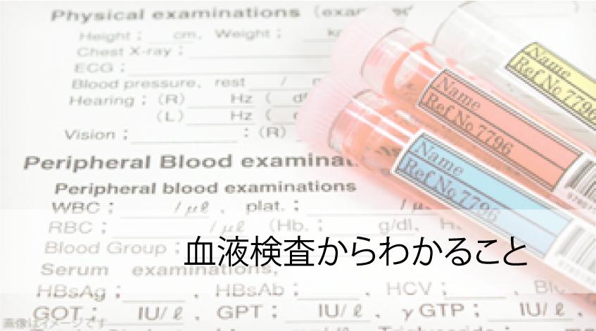 血液検査からわかること